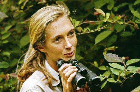 Jane-Goodall-1