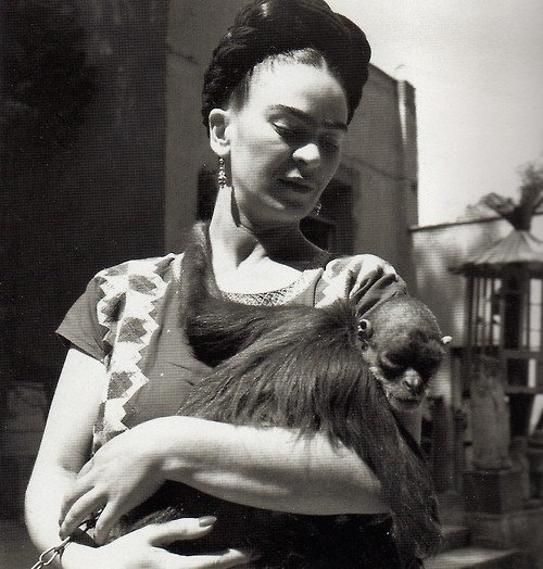 frida_kahlo_monkey